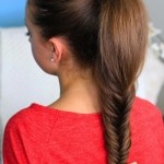 Cute Easy Ponytails Long Hair