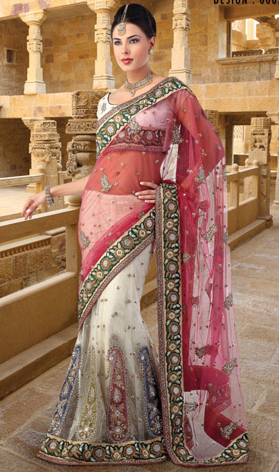 Attractive Indian Saree in Net Embroidered Fabric