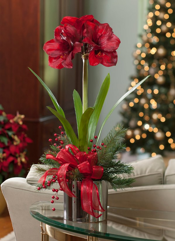 Red and Green Christmas Decoration Ideas