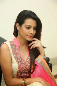 Deeksha Panth's Hot Pic 13 Wearing Indian Backless Saree