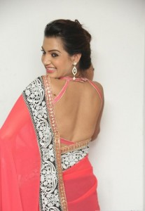 Deeksha Panth's Hot Pic 14 Wearing Indian Backless Saree
