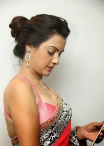 Deeksha Panth's Hot Pic 15 Wearing Indian Backless Saree