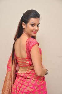 Deeksha Panth's Hot Pic 16 Wearing Indian Backless Saree