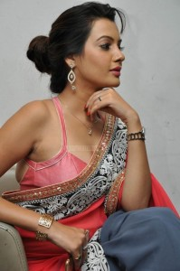 Deeksha Panth's Hot Pic 18 Wearing Indian Backless Saree