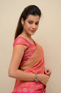 Deeksha Panth's Hot Pic 6 Wearing Indian Backless Saree