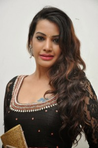 Deeksha Panth's Hot Pic 8 Wearing Indian Backless Saree